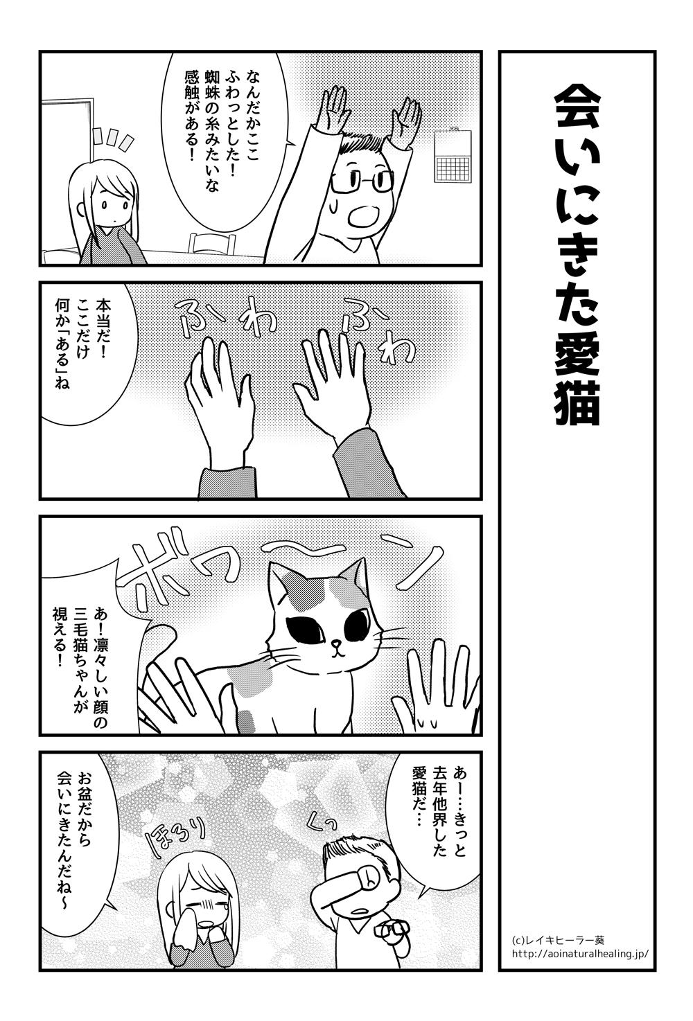 スピリチュアル漫画会いにきた愛猫